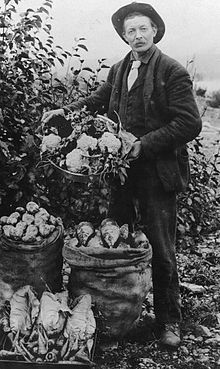 B 1. Italian farmer in the Mississippi Delta in 1909