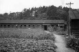 5. Ofuna Prison Camp