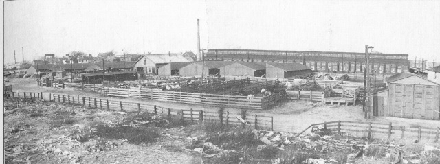 North Brighton Stockyards 1